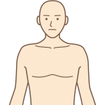 HTMLで人の基本構造を定義