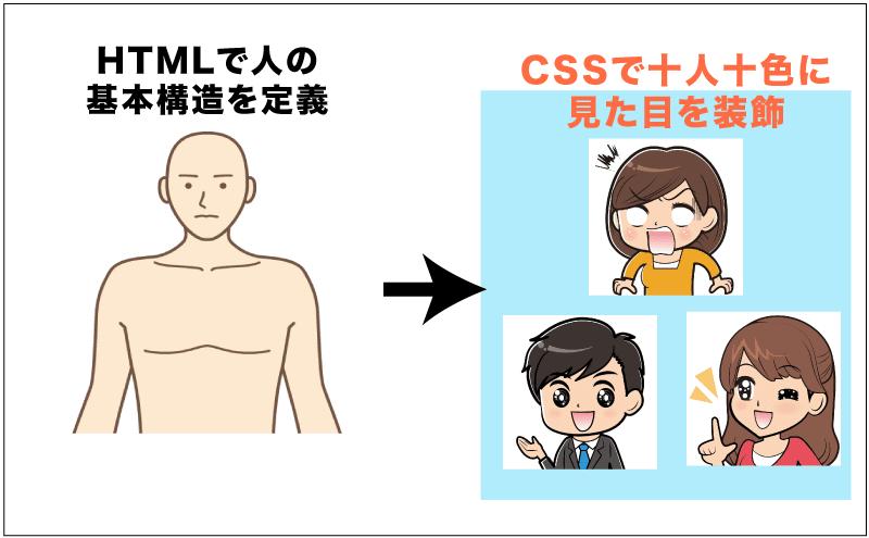 人に例えたイメージ)HTMLは人の構造を定義。CSSで十人十色に見た目を調整