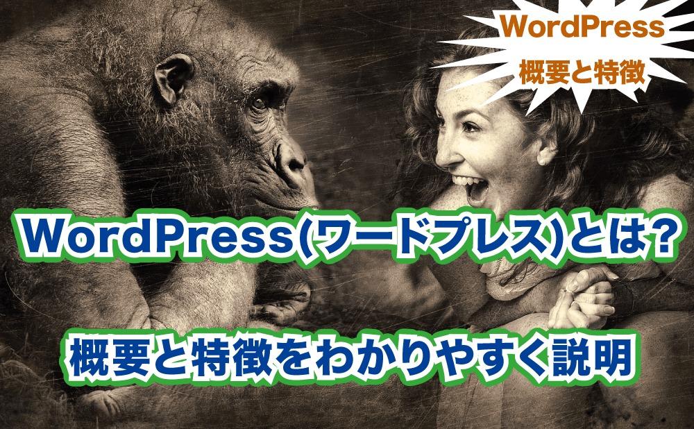 WordPressとは 概要と特徴を分かりやすく説明