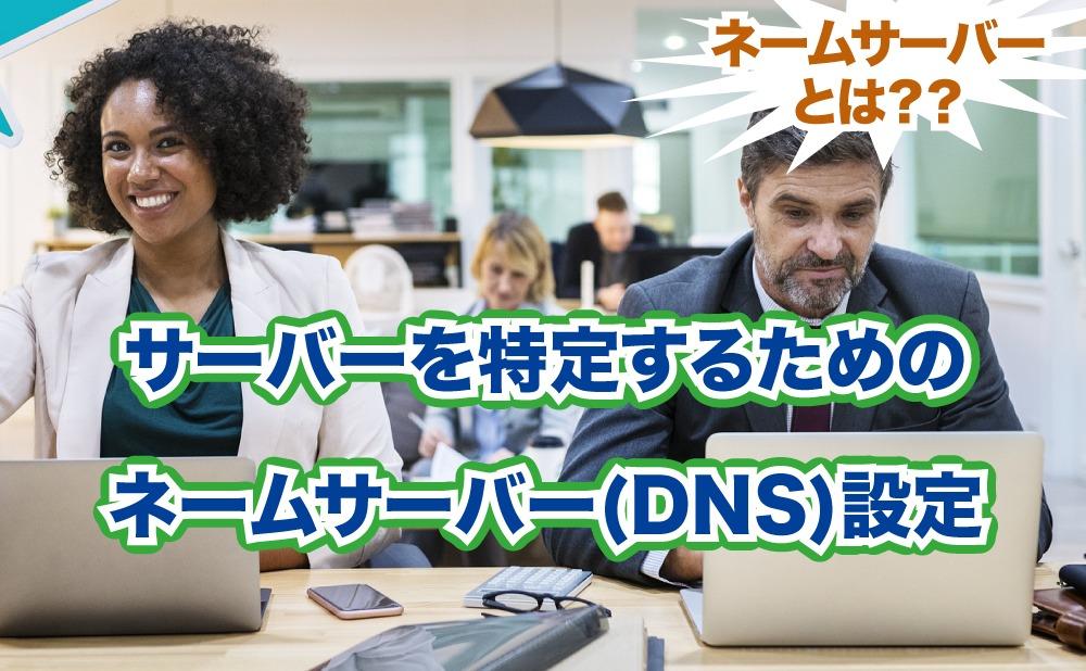 サーバーを特定するための ネームサーバー(DNS)設定