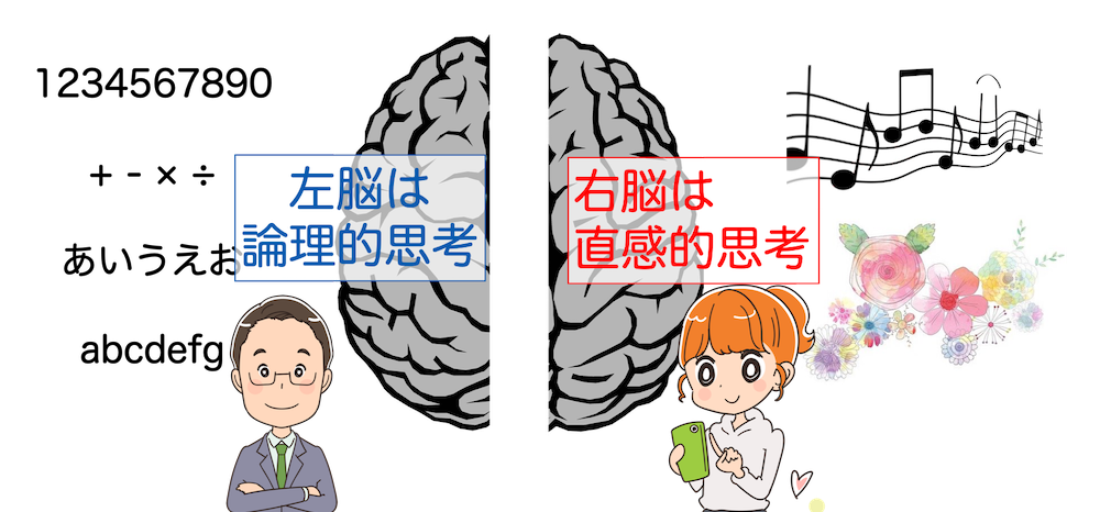 右脳と左脳の違い