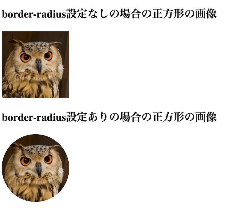 border-radius設定ありの場合の正方形の画像