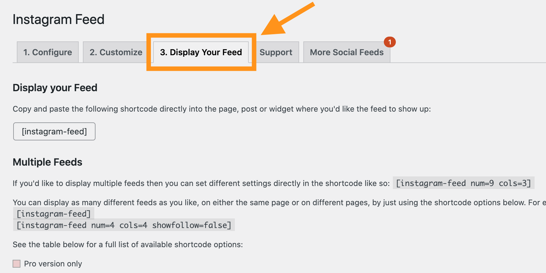 Instagram feedの設定>Display your feed