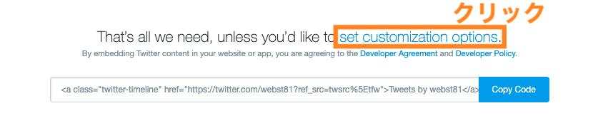 set customization optionsをクリック