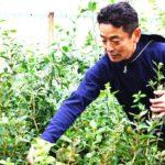 【IT企業から脱サラして農業へ】成子年男さん「大阪南部でブルーベリー観光農園をオープン予定!おいしいブルーベリーを食べにきてください」